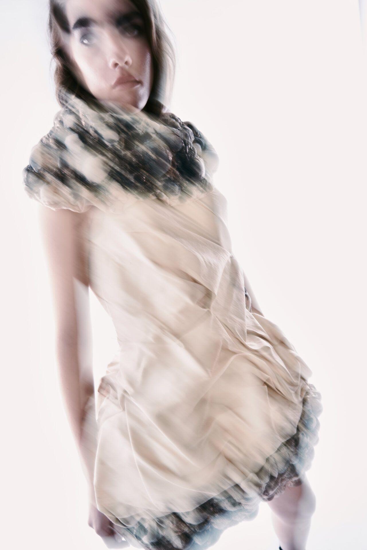 Mantodea - Farys Collection